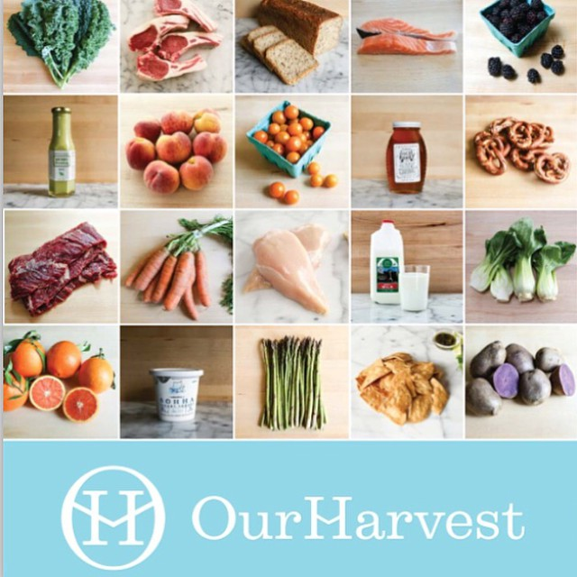 OurHarvest Founders Share Their Unconventional Story with mbaMission's President - mbaMission