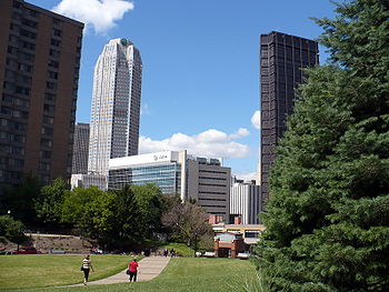 12-Month MBA in Sustainability at Duquesne - mbaMission