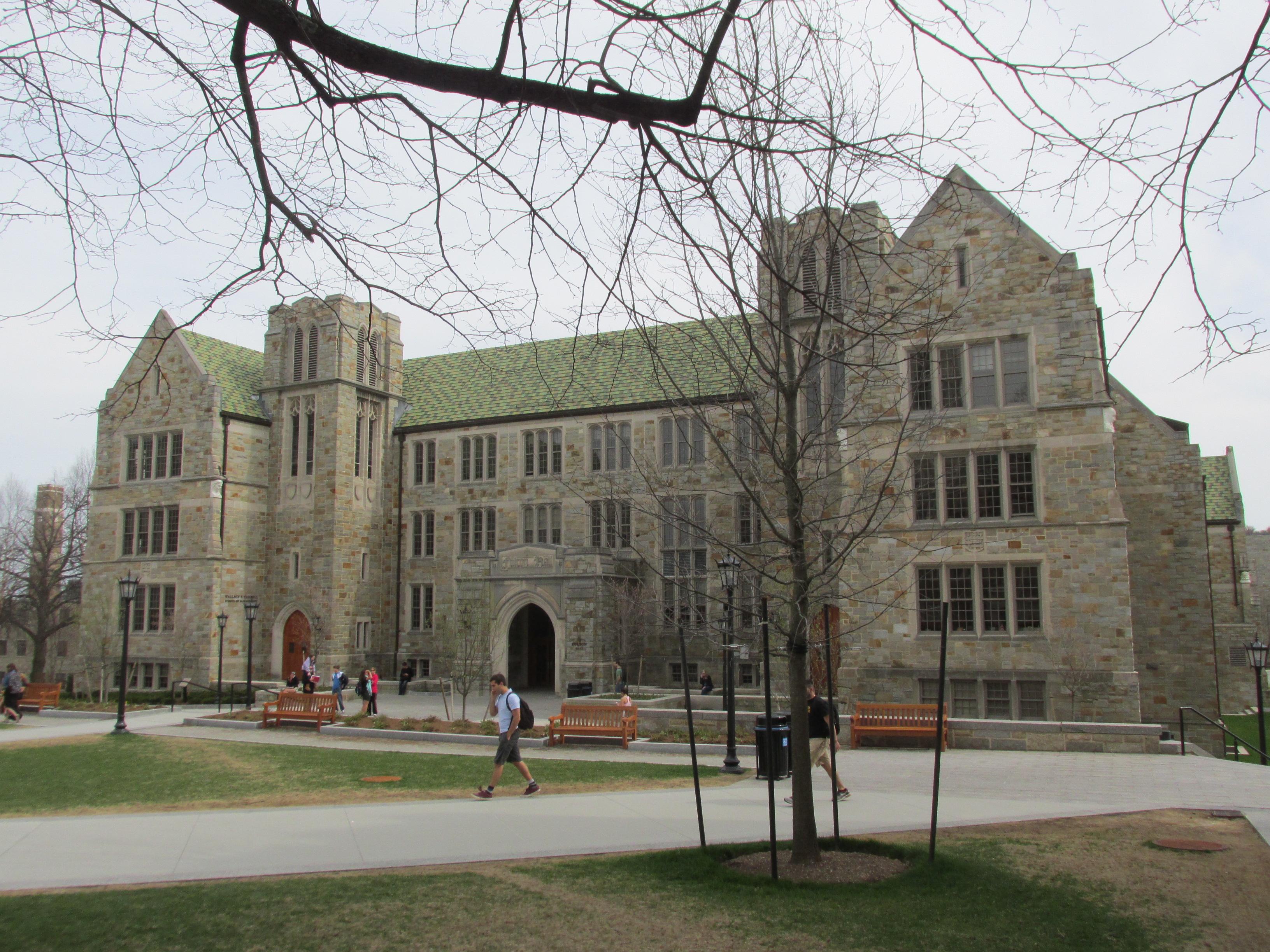Boston College Mba Resume Template - Resume